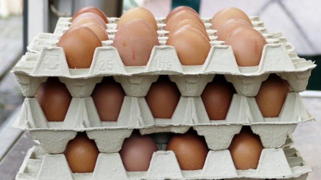 Da li će doći do nestašice jaja i kakva je sudbina pilećeg mesa? - ©Agromedia