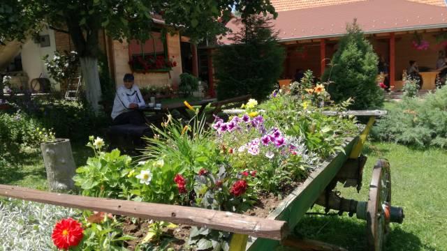 Za ljubitelje prirode i dobrog zalogaja: Taorska vrela i Sremušijada © Agromedia