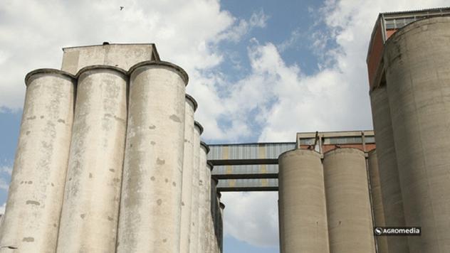 Silosi kompanije Danubius - © Agromedia