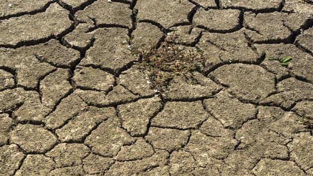 Klimatske promene - © Pixabay