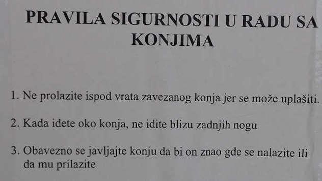 Pravilnik Centra za hiporehabilitaciju - © Foto: Gordana Simonović Veljković