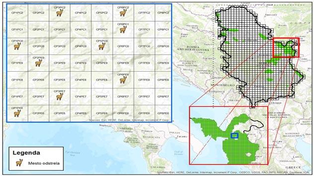 Predlog novog sistema monitoringa ulovljene jelenske divljači - © Dragan Gačić/Milan Ostojić