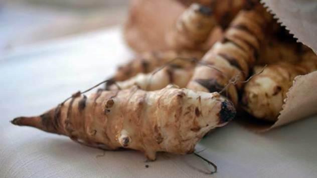 Da li ste znali da je čičoka veoma lekovita biljka - © BBC