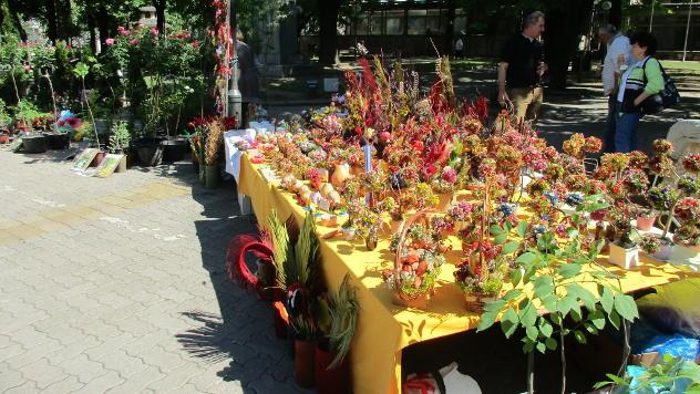 Cvetni trg u Kikindi - ©Foto: Danijela Jankov