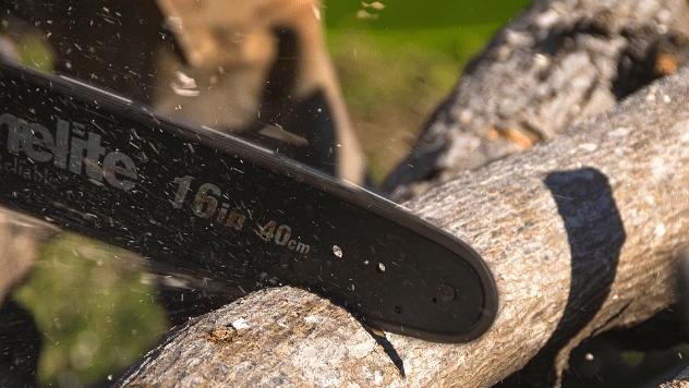 Drvo sa motornom testerom © Pixabay
