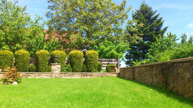 Dvorište sa četinarima - © Foto: www.pixabay.com
