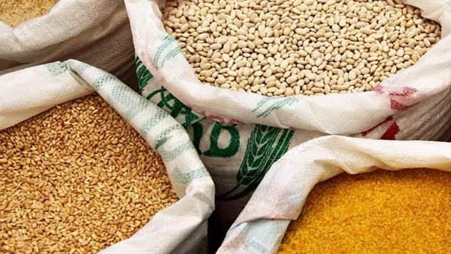 Kukuruz je kultura koju smo najviše izvozili protekle godine - © Pixabay
