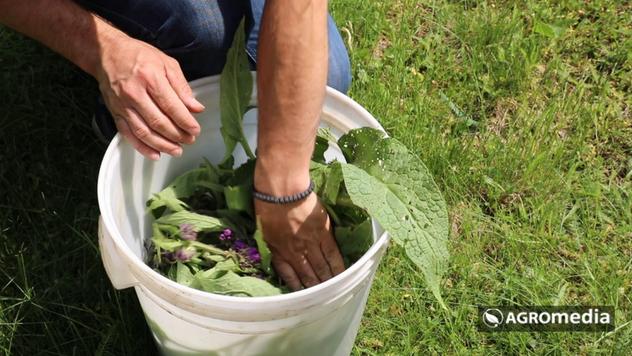 Priprema biljke - © Agromedia