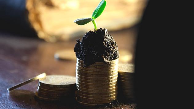 Novac u poljoprivredi © Pixabay