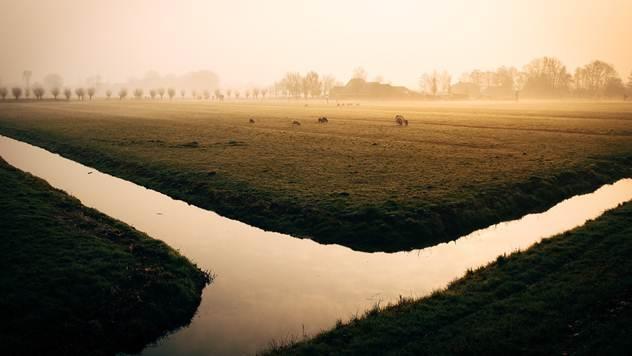 Ilustracija: Kanalska mreža - © Pixabay