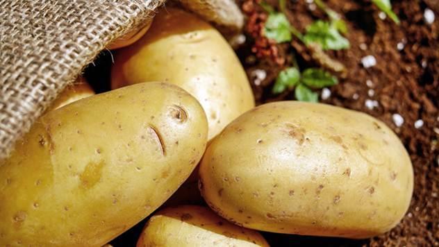 Krompir niko neće da jede, proizvodnja opada - © Pixabay