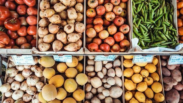 Ilustracija: Proizvodnja povrća - © Pixabay