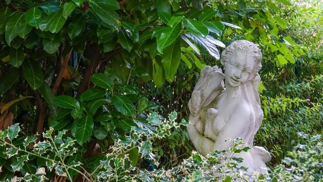 Zelena ili živa ograda: Sada se sadi, kreira oazu mira i štiti od buke i prašine- © Pixabay