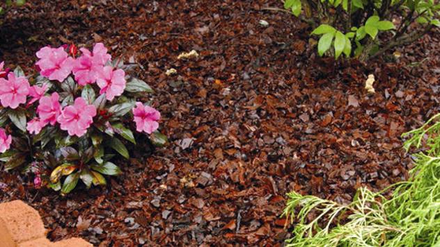 Mulčiranje cveća