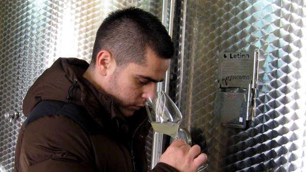 Nemanja Arsenijević, vinar iz Vinče kod Topole - © Foto: Biljana Nenković