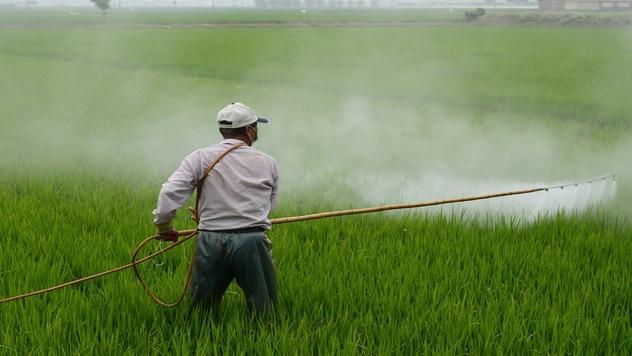 prskanje pesticida- ©Pixabay