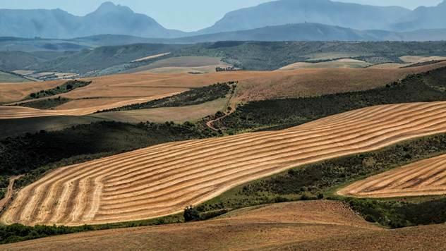 Poljoprivredna proizvodnja - © Pixabay