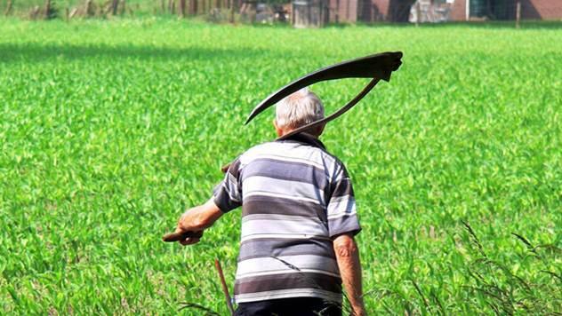 Poljoprivrednik na njivi - © Pixabay