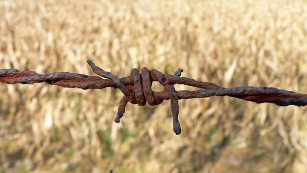Stranci mogu da kupuju zemlju, ali pod strogim uslovima - © Pixabay