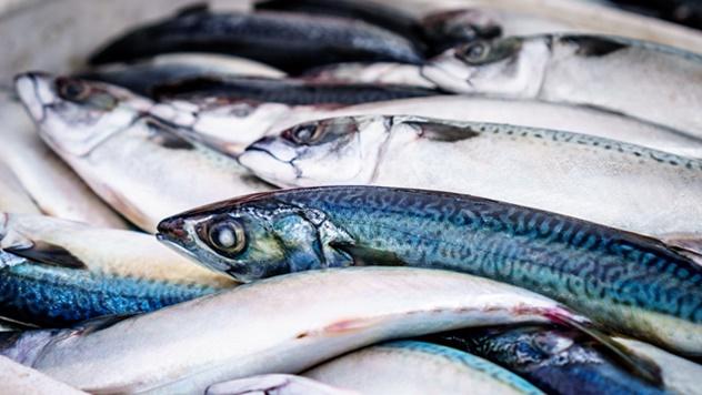 Kako odabrati svežu ribu? - © Pixabay