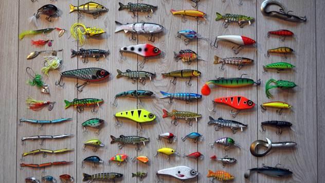 Međunarodni sajam lova, ribolov i sport - © Pixabay