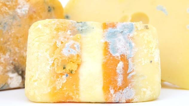 Buđavi sir - © Pixabay