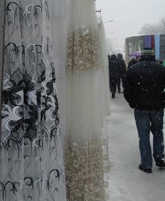 Tezge pod snegom - © Danijela Jovanović / Agromedia