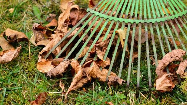 Jesenji radovi u organskoj basti - © Pixabay