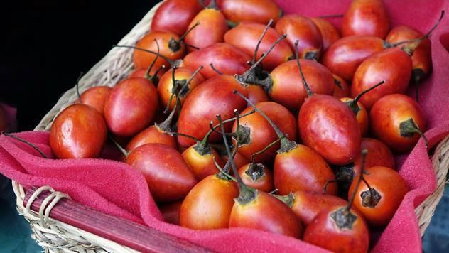 Zreli plodovi tamarila
