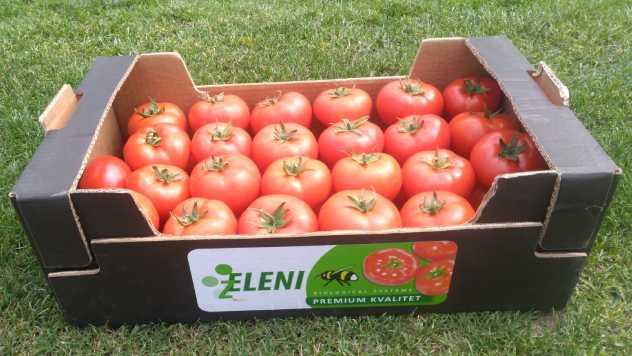 Premijum paradajz @ Zeleni hit