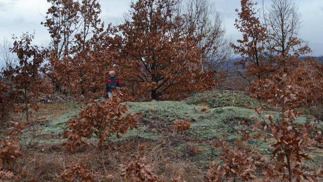 Geolog Pašajlić na zelenom brdu - © Foto: Biljana Nenković