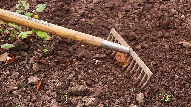 Besplatno i jednostavno: Kako sami da uradite analizu tipa zemljišta u kućnim uslovima - © Pixabay