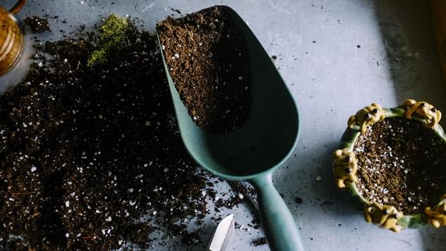 Mešavina za sadnju - © Pixabay