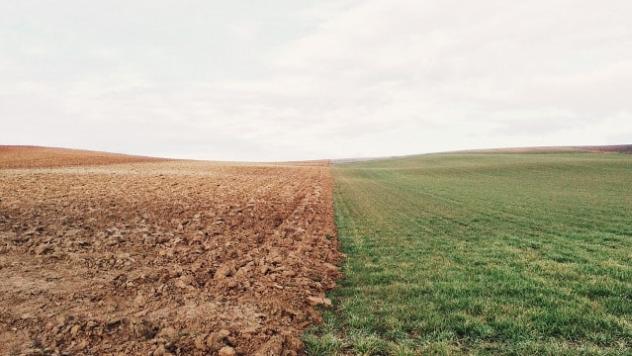 Zemljište © Pixabay