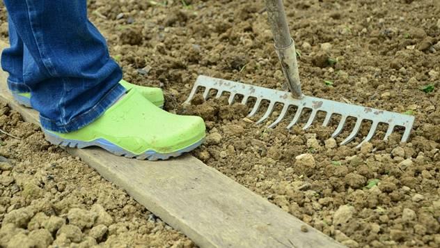Pripremanje zemljišta - © Agromedia