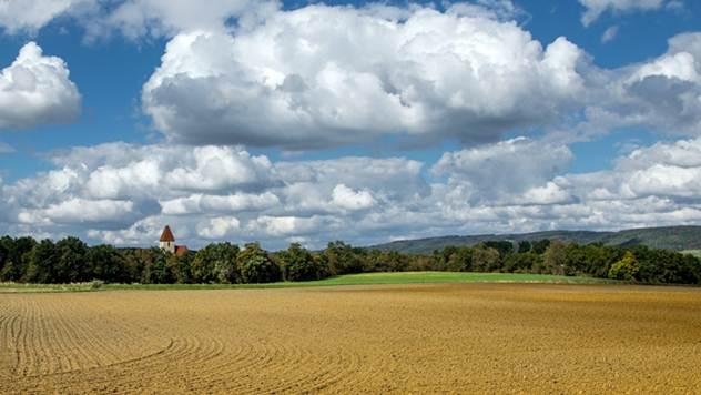 Plodne ravnice u Kraljevu niko neće- © Pixabay