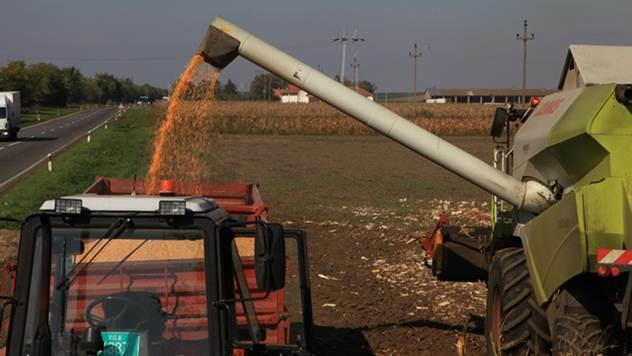 Institut za kukuruz Zemun Polje - © Agromedia